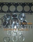 Set pistoane complete + cuzineti si garnitura chiulasa Iveco Aifo F4BE0684B
